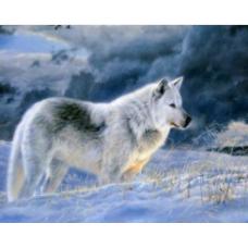 Алмазн. живопись 25*20 ЧАСТИЧНОЕ Волк L807
