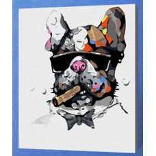 Рисование по номерам 30*40 в раме Бульдог с сигарой Е741 (21 цветов, 4 звезды)