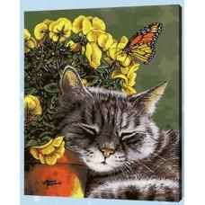 Рисование по номерам 30*40 в раме Кот и бабочка 8059 (21 цветов, 4 звезды)